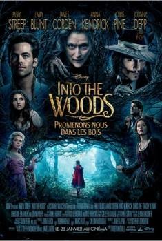 Into the Woods, Promenons-nous dans les bois (2014)