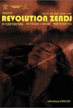 Révolution Zendj (2013)