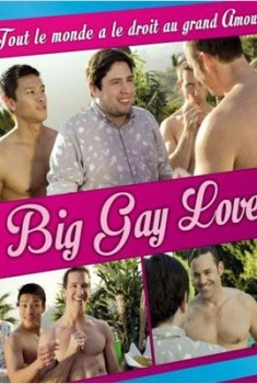 Big Gay Love (2013)
