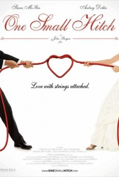 Petit mensonge et grand mariage (2013)