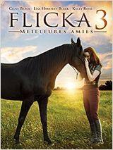 Flicka 3 : Meilleures amies (2012)