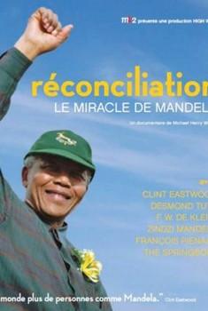 Réconciliation, Le Miracle de Mandela (2010)
