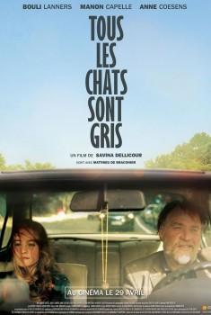 Tous les Chats sont gris (2015)