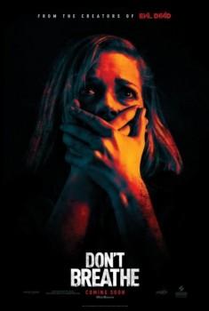 In the dark (Don't breathe) (2016)