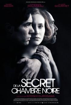 Le Secret de la chambre noire (2016)