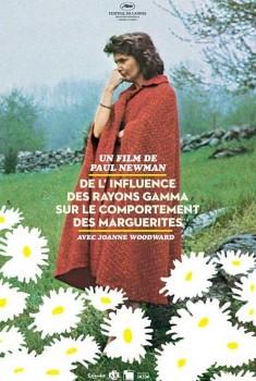 De l'influence des rayons gamma sur le comportement des marguerites (1972)